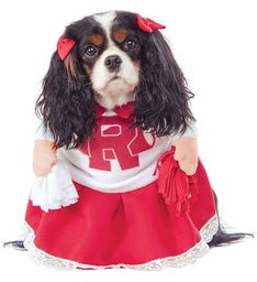 Grease Rydell High Cheerleader Pet Costume