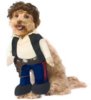 Star Wars Han Solo Pet Costume